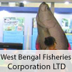 West-Bengal-Fisheries-Corporation