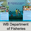 W-B-Department-of-Fisheries-CREATIVES